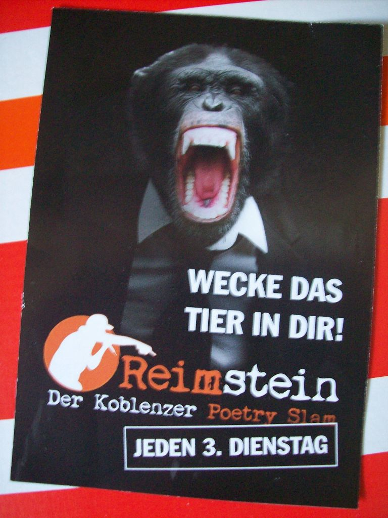 reimstein_flyer