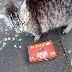 Mein Senf zu: Exploding Kittens