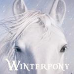Mein Senf zu: Winterpony